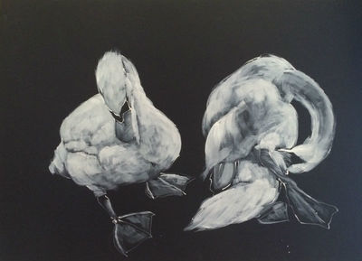 White Ink on Black paper - Two Swans by Diana Shepherd