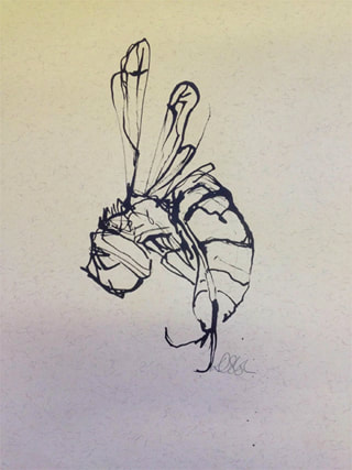 Pen and Ink line drawing - Wasp by Diana Shepherd