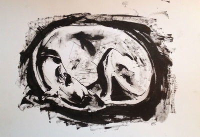 Ink on paper - Sleeping Whippet by Diana Shepherd