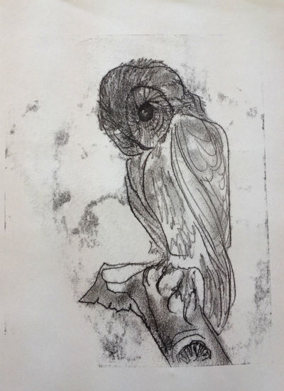 Printed etching on paper - Owl by Diana Shepherd